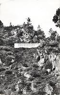 VIEUX -VY-SUR-COUESMON - ( 35 ) - Grotte De Notre-Dame    ( C.P.S.M.-Pt-Ft ) - France