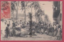 SENEGAL--SAINT-LOUIS---Derniers Preparatifs Pour Le Départ---Chameaux---anime - Senegal