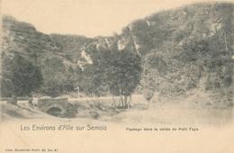 CPA - Belgique - Paysage Dans La Vallée Du Petit Fays - Vresse-sur-Semois