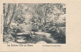 CPA - Belgique - Ruisseau Du Petit Fays - Vresse-sur-Semois