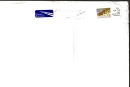 POSTA AEREA . EIRE . ANNO 2010 - Covers & Documents