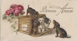 Animaux - Chiens - Basset Teckel Dachshund Westie King Charles - Mignonnette - Colis Courrier Express - Hunde