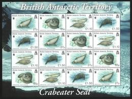 BAT / Brit. Antarktis 2009 - Mi-Nr. 505-508 ** - MNH - KLB - Robben / Seals (2) - British Antarctic Territory  (BAT)