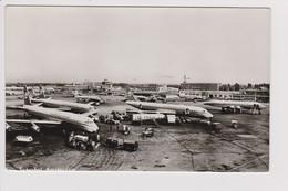 Vintage Rppc KLM K.L.M Royal Dutch Airlines Convair & Douglas Dc-7 & Dc-8 @ Schiphol Airport Number B - 1919-1938: Between Wars
