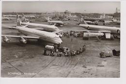 Vintage Rppc KLM K.L.M Royal Dutch Airlines Convair & Douglas Dc-7 & Dc-8 @ Schiphol Airport Number D - 1919-1938: Between Wars
