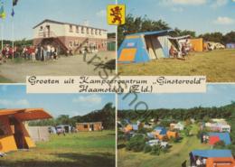 Haamstede - Camping Ginsterveld [AA45 5.646) - (gelopen Met Pz) - Netherlands