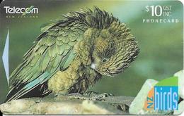 -CARTE-MAGNETIQUE-NEW  ZELANDE-10$-PERROQUET Des MONTAGNE-Plastic Epais Glacé TBE- - Gallinaceans & Pheasants