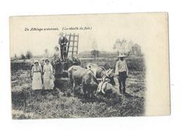 ARDENNES - Attelage Ardennais (la Récolte Des Foins) - Dos Simple - Pas Circulé - Attelages