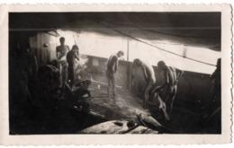 """Bateau 1932 """"rivier"""" ? La Douche Jeune Homme Nu Marin ?!  Photo - Bateaux"""