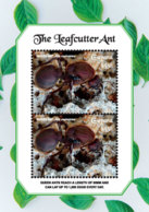 Guyana   2018  Fauna  Leafcutter Ant  I201901 - Guiana (1966-...)