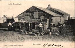 1 Postkaart Kalmphout  Heide -Calmpthout   De Cambus C1906 Uitgever F.Hoelen N°549 - Kalmthout