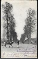 CPA 27 - Evreux, Avenue De Cambolle - Evreux