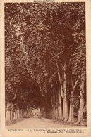 Richelieu - Les Promenades - Platanes Centenaires - Other Municipalities