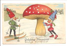 Kabouter-Gnom-Gnome-Paddenstoel-Pilz-Champignon-Mushroom - Nieuwjaar