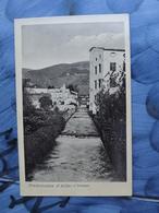 Q113 CARTOLINA PIEDIMONTE D'ALIFE BENEVENTO   VIAGGIATA 1915 - Benevento
