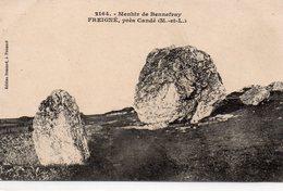 Freigné Candé Menhir De Bennefray Menhirs Dolmens - Autres Communes