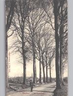 BAUDOUR Entrée Du Bois Env. 1908 Ed. Marcovici - Saint-Ghislain