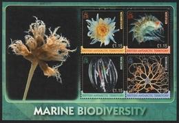 BAT / Brit. Antarktis 2010 - Mi-Nr. Bl. 18 ** - MNH - Meerestiere / Marine Life - Briefmarken
