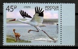 Russia 2019 Rusia / Birds Europa CEPT MNH Vögel Aves Oiseaux / Cu14003  5  (49) - Pájaros