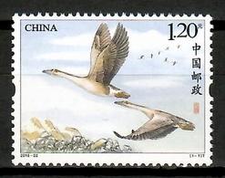 China 2018 / Birds MNH Vögel Aves Oiseaux / Cu14004  5  (49) - Pájaros