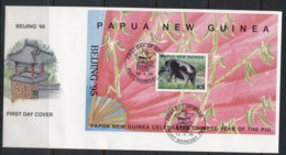 PNG 1995 New Year Of The Pig, Beijing MS FDC - Papua New Guinea