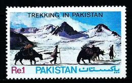 Pakistán Nº 572 Nuevo - Pakistán