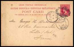 4621 Belize 1893 Pour Lille France Carte Postale British Honduras Entier Postal Stationery - Britisch-Honduras (...-1970)