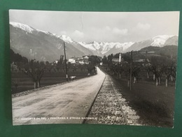 Cartolina Demonte - Panorama E Strada Nazionale - 1939 - Cuneo