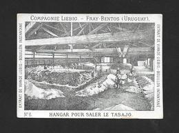 Chromo Liebig Rarità  S1 N.6 HANGAR POUR SALER LE TASAJO 1872- Perfetto Stato - R4 - Liebig