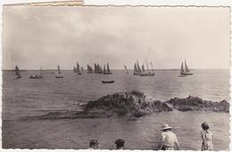56 - Séné (Morbihan) - Régates De Moustérian - 1956 - France