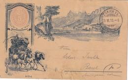 SUISSE 1893  ENTIER POSTAL/GANZSACHE/POSTAL STATIONERY  CARTE ILLUSTREE DE ZURICH - Entiers Postaux