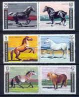 Bulgarie (Bulgaria) MNH ** 222 N° 3373 / 3378 Cheval (chevaux Horse Horses) Se Tenant - Pferde