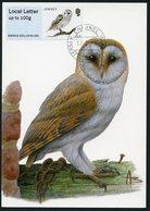 JERSEY (2015). Carte Maximum Card ATM Post&Go - Tyto Alba, Barn Owl, Chouette Effraie, Kerkuil, Schleiereule - Buzin - Jersey