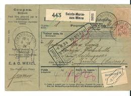 Bulletin D'Expédition D'un Colis Postal:Ste Marie Aux Mines Pour La Suisse , Mixte Timbres Fiscaux Et Postaux , 1924 - France