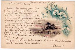 """Schweiz Suisse 1899: Bild-PK CPI  *Vue & Fleurs"""" Mit O BERN 13.X.99 Pour LAUSANNE 14.X.99 - Blumen"""