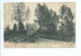 Vilvoorde Vilvorde Au Parc La Tour ( Sugg Gand  Série 31 N. 17 ) - Vilvoorde