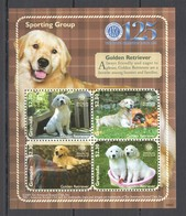 T575 2009 GRENADA FAUNA PETS DOGS DOMESTIC ANIMALS SPORTING GROUP 1KB MNH - Cani