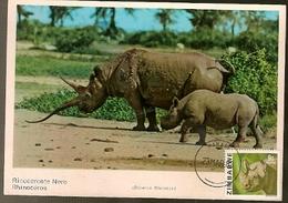Zimbabwe & Maxi Card, African Wild Life, Rhinoceros Nero, Diceros Bicornis, Harare (166) - Zimbabwe