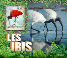 Togo.  2019  Ibis. (0224b)   OFFICIAL ISSUE - Cigognes & échassiers