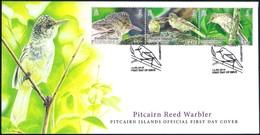 Pitcairn Isl. (2019) Uccelli Birds Oiseaux: Pitcairn Reed Warbler (acrocephalus Vaughani) - FDC - Mussen