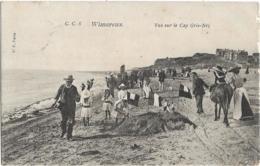 D62 - WIMEREUX - VUE SUR LE CAP GRIS NEZ-Nombreux Enfants-Quelques Personnes-Ane-Villas En Arrière Plan - Frankrijk