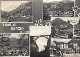 9455-SALUTI DA BARZIO(LECCO)-FG - Saluti Da.../ Gruss Aus...