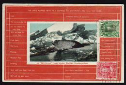 TERRE NEUVE: Timbres N° 89 Et 90 Obl En 1918 Sur Une Belle Carte, Un Phoque à L'abri D'un Manteau Blanc. - Terre-Neuve