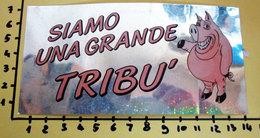 SIAMO UNA GRANDE TRIBU' A SPECCHIO PANINI STICKER VINTAGE NEW ORIGINAL - Edizione Italiana