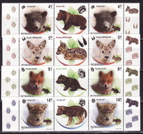Romania, 2013, Fauna, Fox, Wolf, Bear, Cubs, 8 Stamps With Labels - 1948-.... Repúblicas