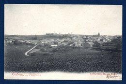 Corbion( Bouillon). Panorama Avec L'église St. Jean - Baptiste. 1908 - Bouillon