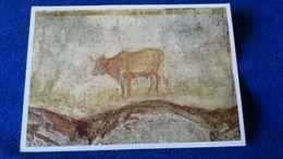 Sacre Grotte Vaticane Einzelheit Einer Freskendekoration Vatican - Vaticano