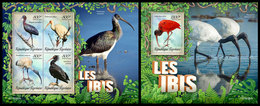 TOGO 2019 - Ibis, M/S + S/S. Official Issue - Cigognes & échassiers