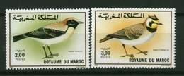 Roy. Maroc ** N° 1073/1074 - Oiseaux - Morocco (1956-...)