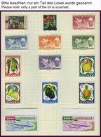 GUINEA *, **, 1959-68, Praktisch Komplette Sammlung Im Album (ohne Ungezähnte Ausgaben), Blocks Wohl Alle Postfrisch, Pr - Guinea (1958-...)